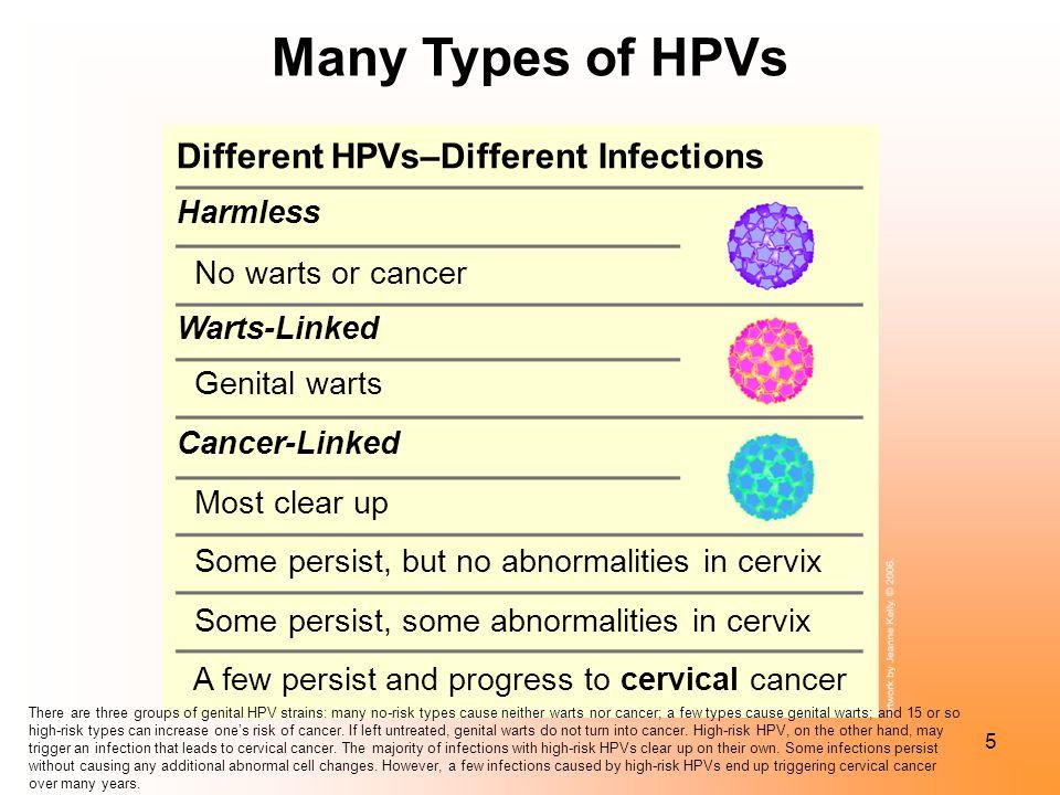 Hpv non warts, Hpv not genital warts