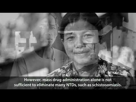 sursa de invazie a dipyllobothriasis