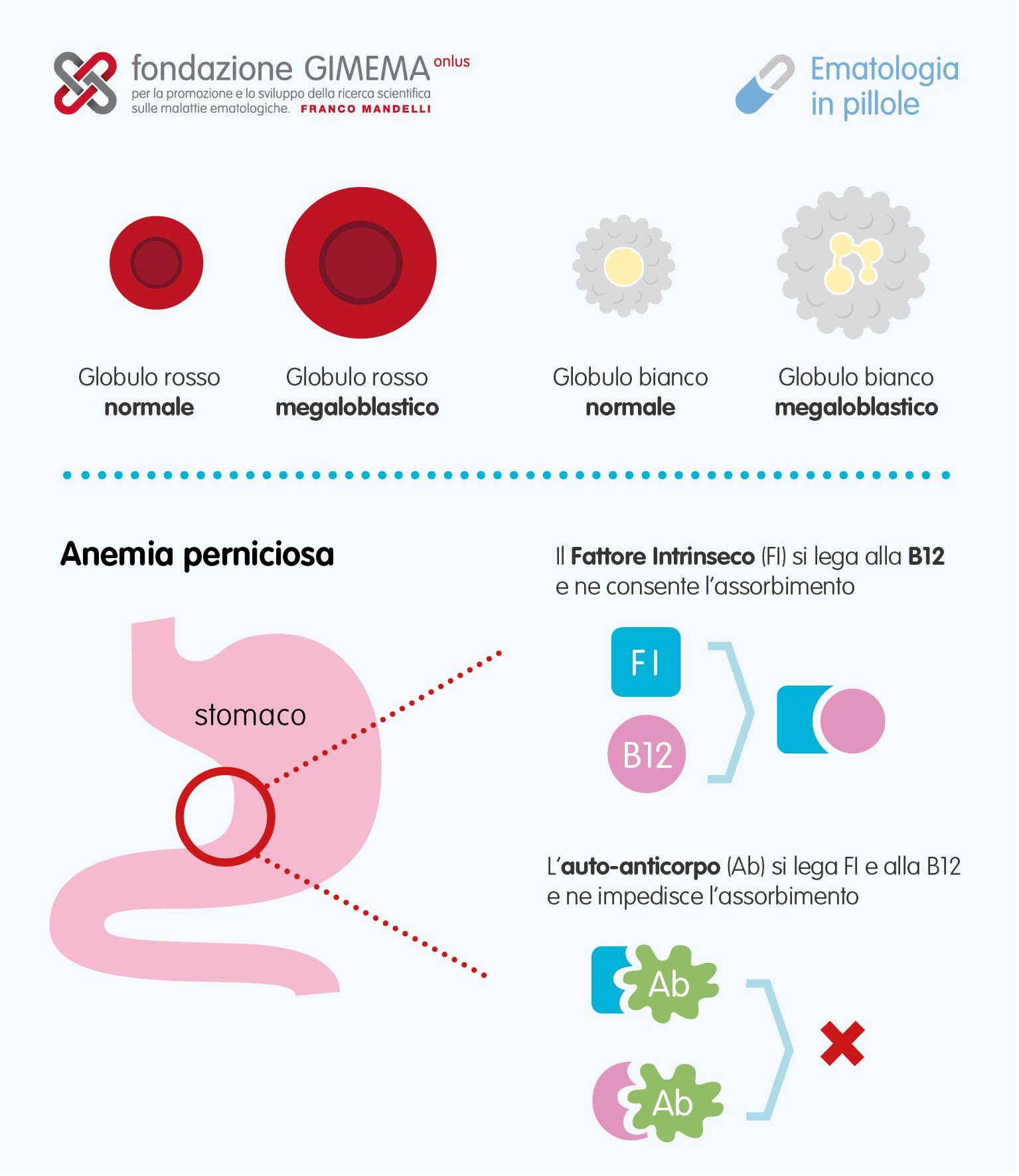 anemie vitamina b12