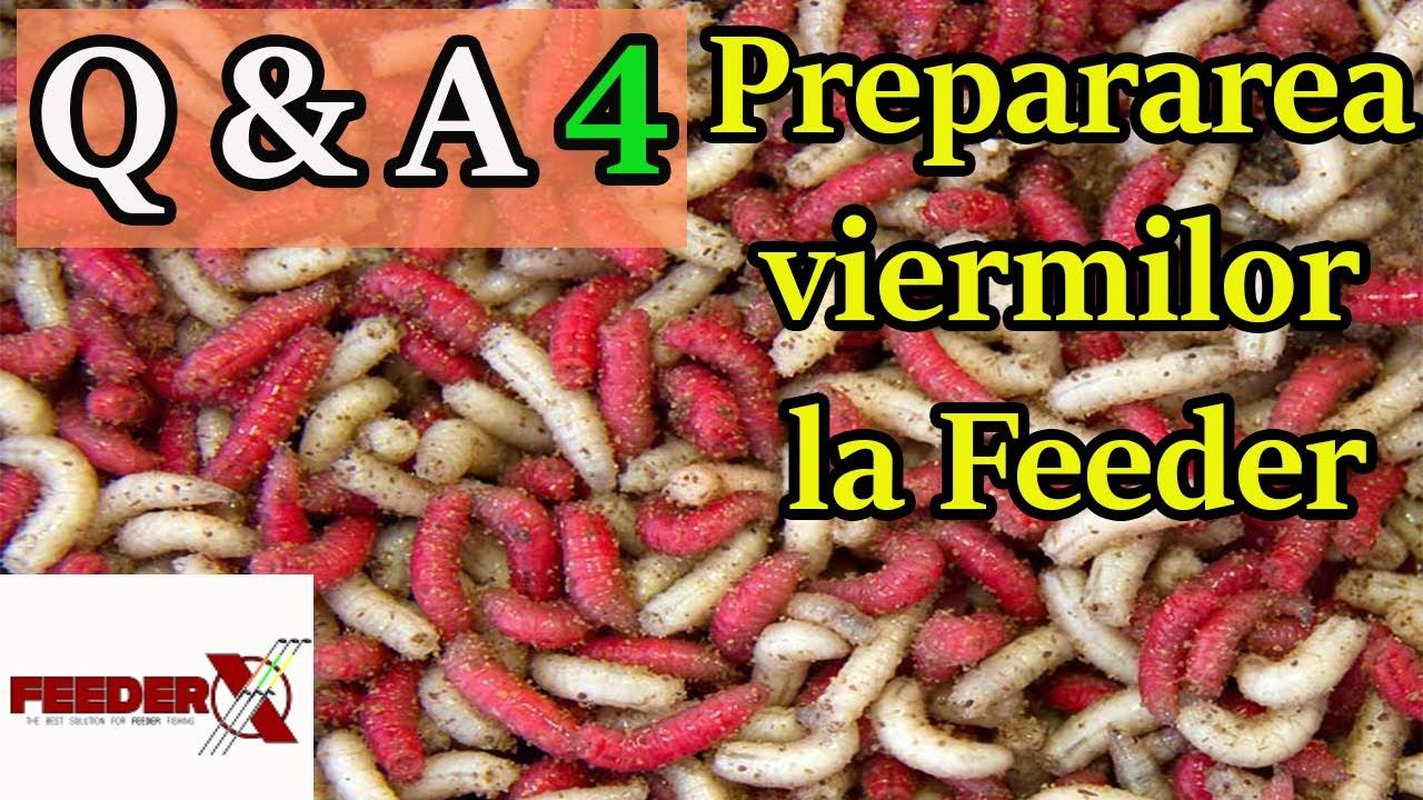 preparate pentru viermi pentru adulți)