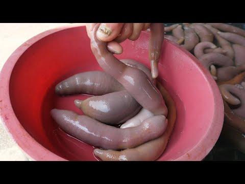 Cum sa scapi de viermi cu usturoi? Rețete și recenzii - Complicații June
