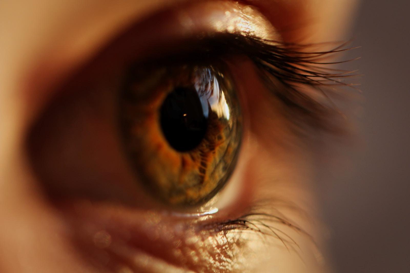 parazit în tratamentul ochilor)