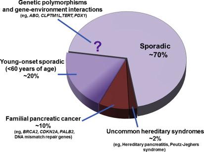 pancreatic cancer familial