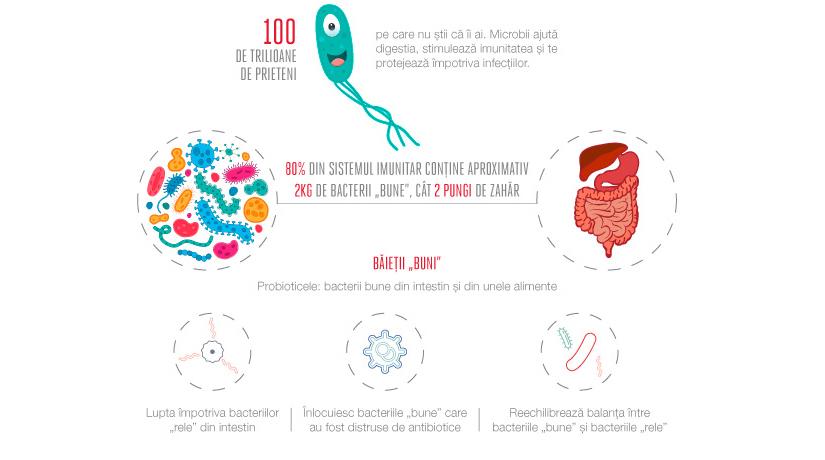 Iaurt bacterii sanatoase