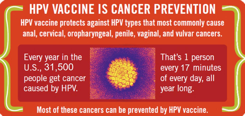 papillomavirus vaccine prevention