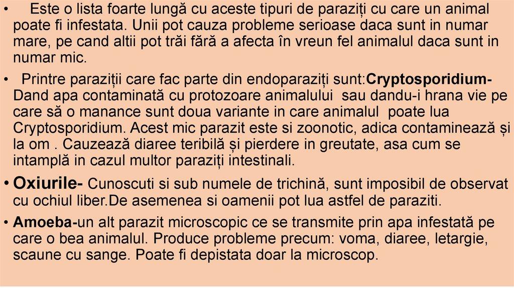 Ancylostoma duodenale – info-tecuci.ro
