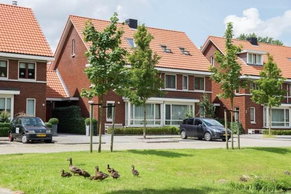 viermerenstraat 3 rotterdam eliminar oxiuros en ninos