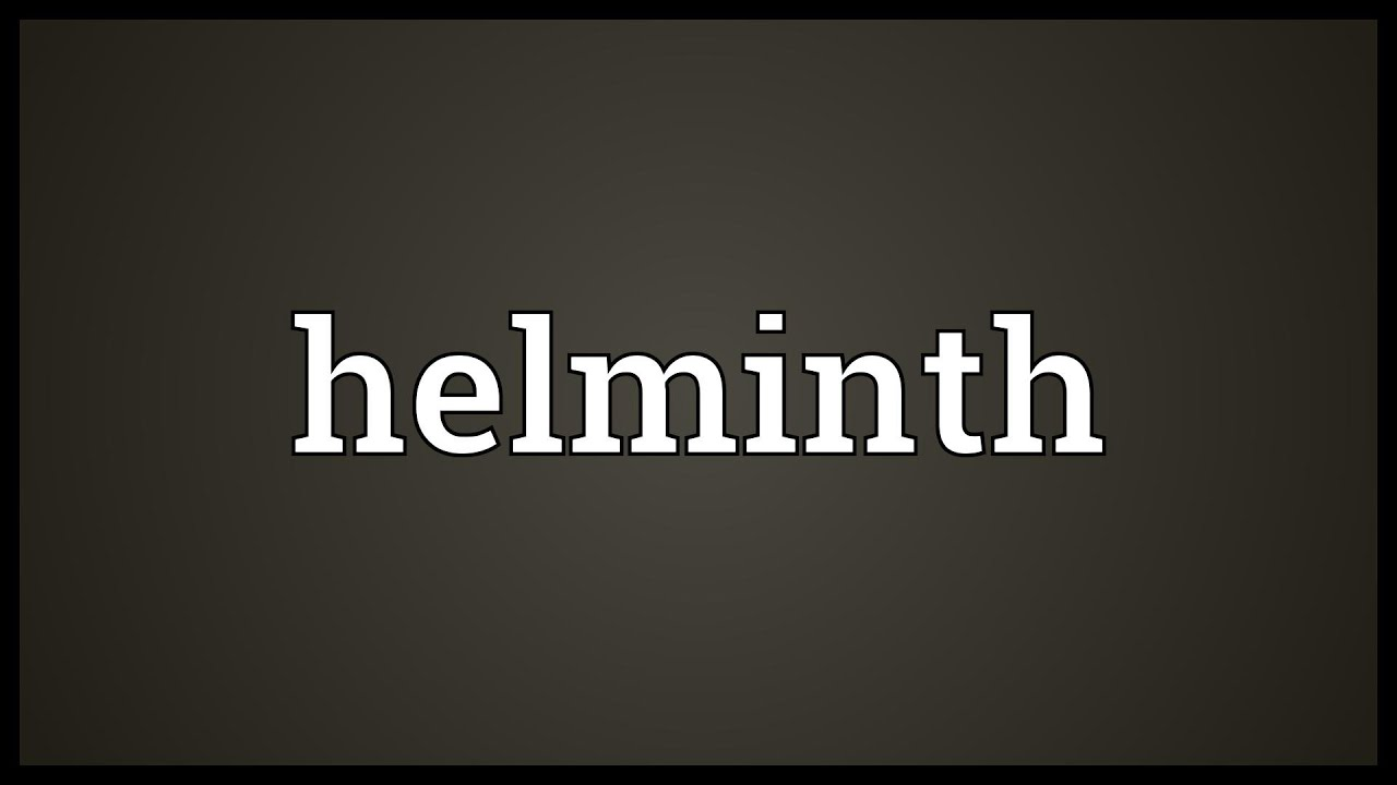Define helminth in medical terms - Papilloma virus perdite Define helminth infection