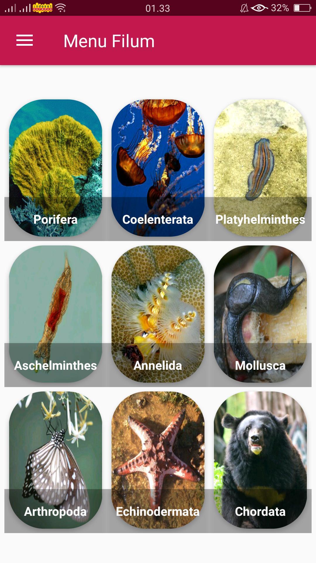 Phylum aschelminthes imagine, Muito mais do que documentos