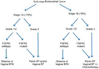 endometrial cancer kras