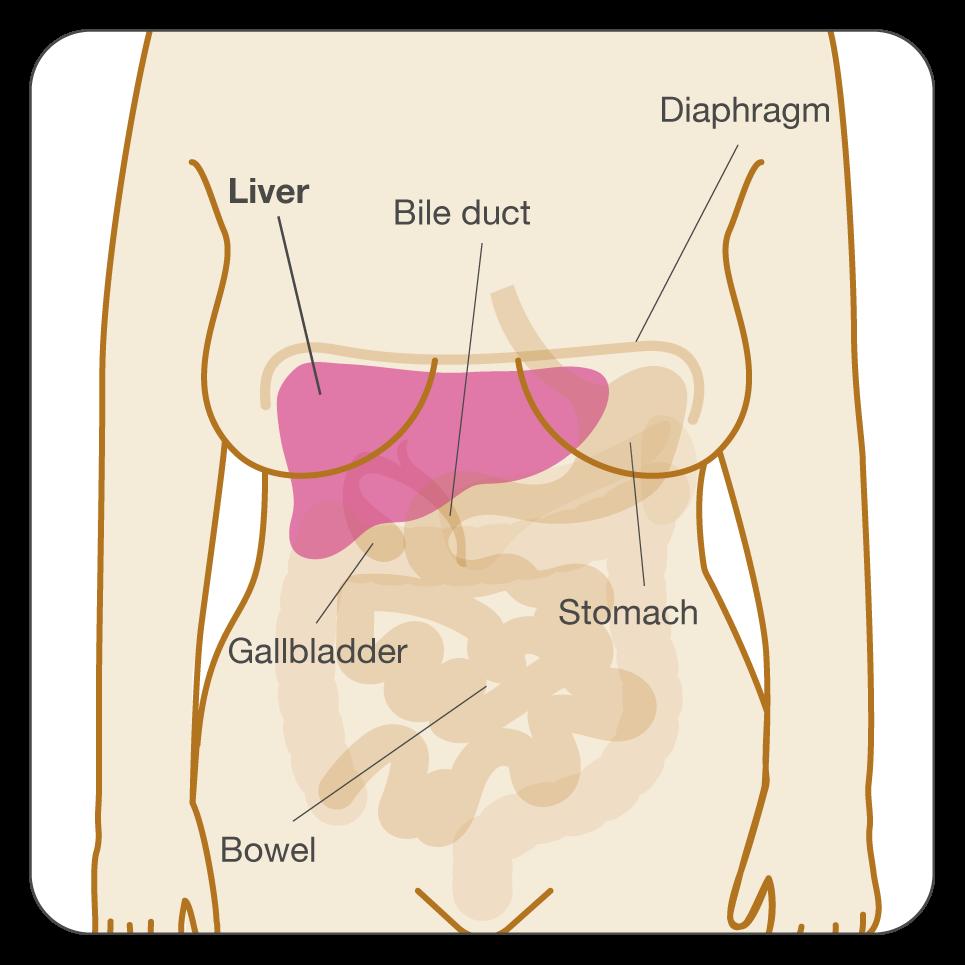 cum se întâmplă enterobioza