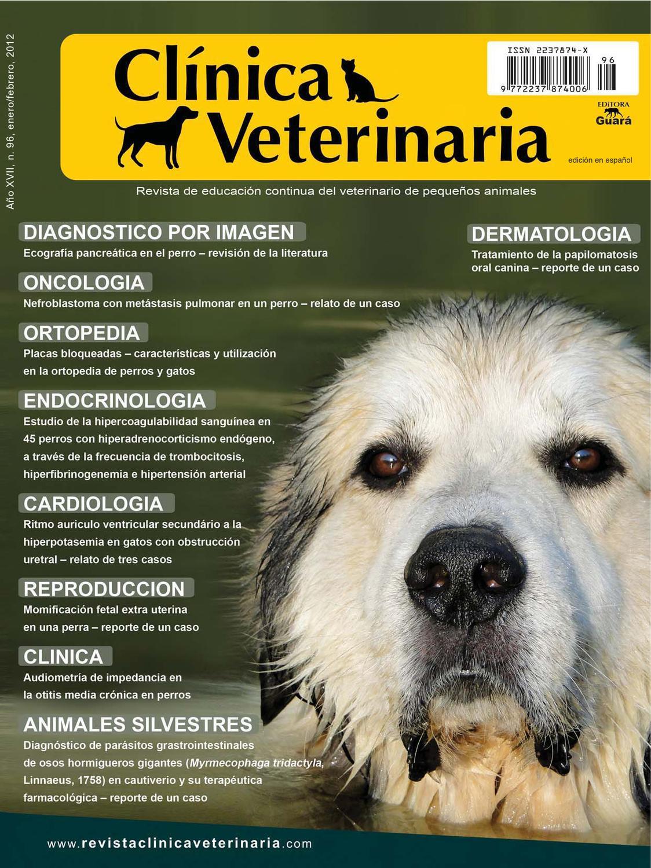 papilomatosis canina tratamiento)
