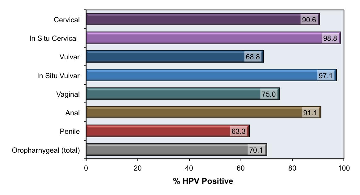 human papillomavirus duration)