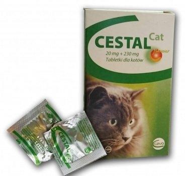 tratament viermisori pisica)