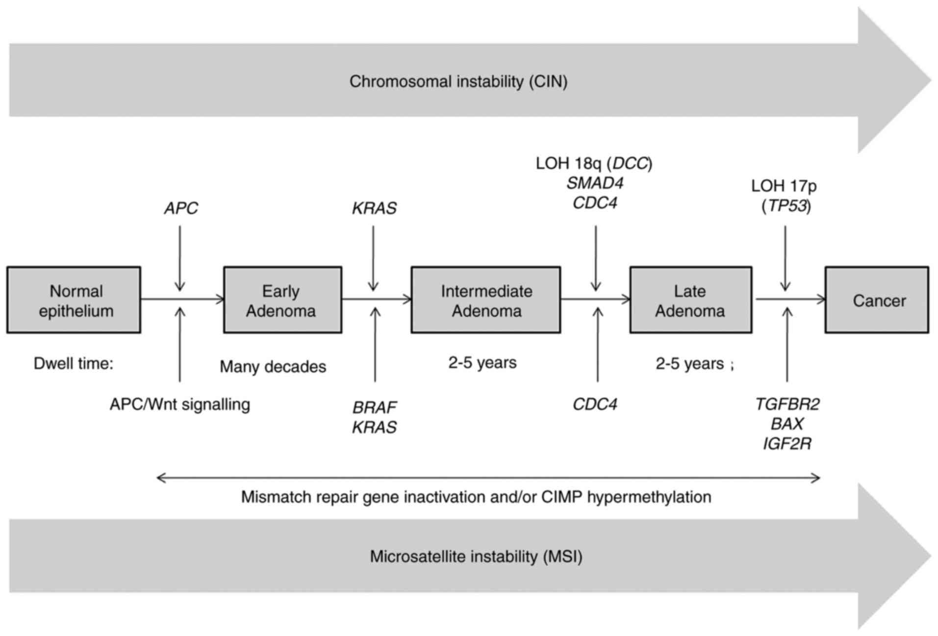 Diagnosticarea cancerului colorectal
