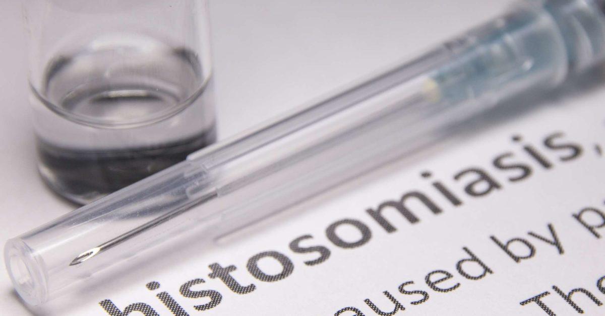 schistosomiasis - Engleză-Română Dicţionar - Glosbe
