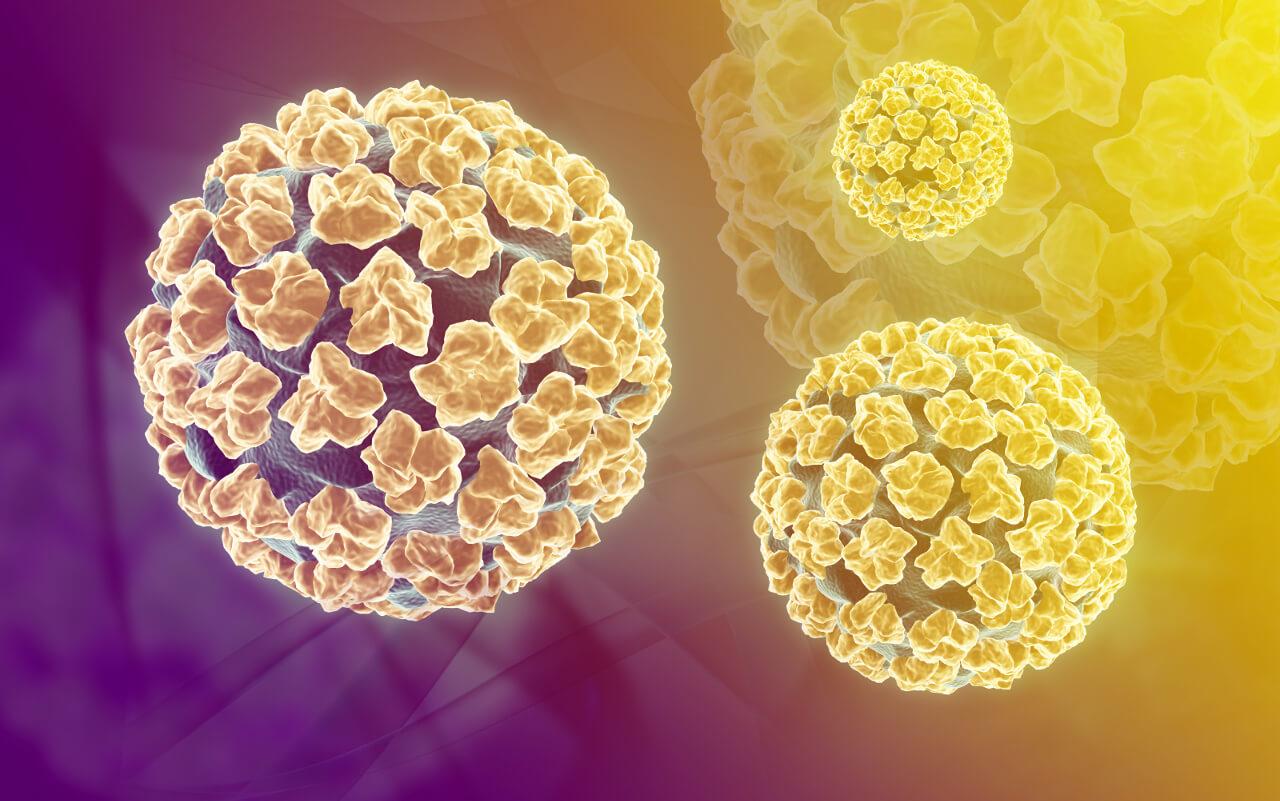 Lecba papillomavirus - info-tecuci.ro