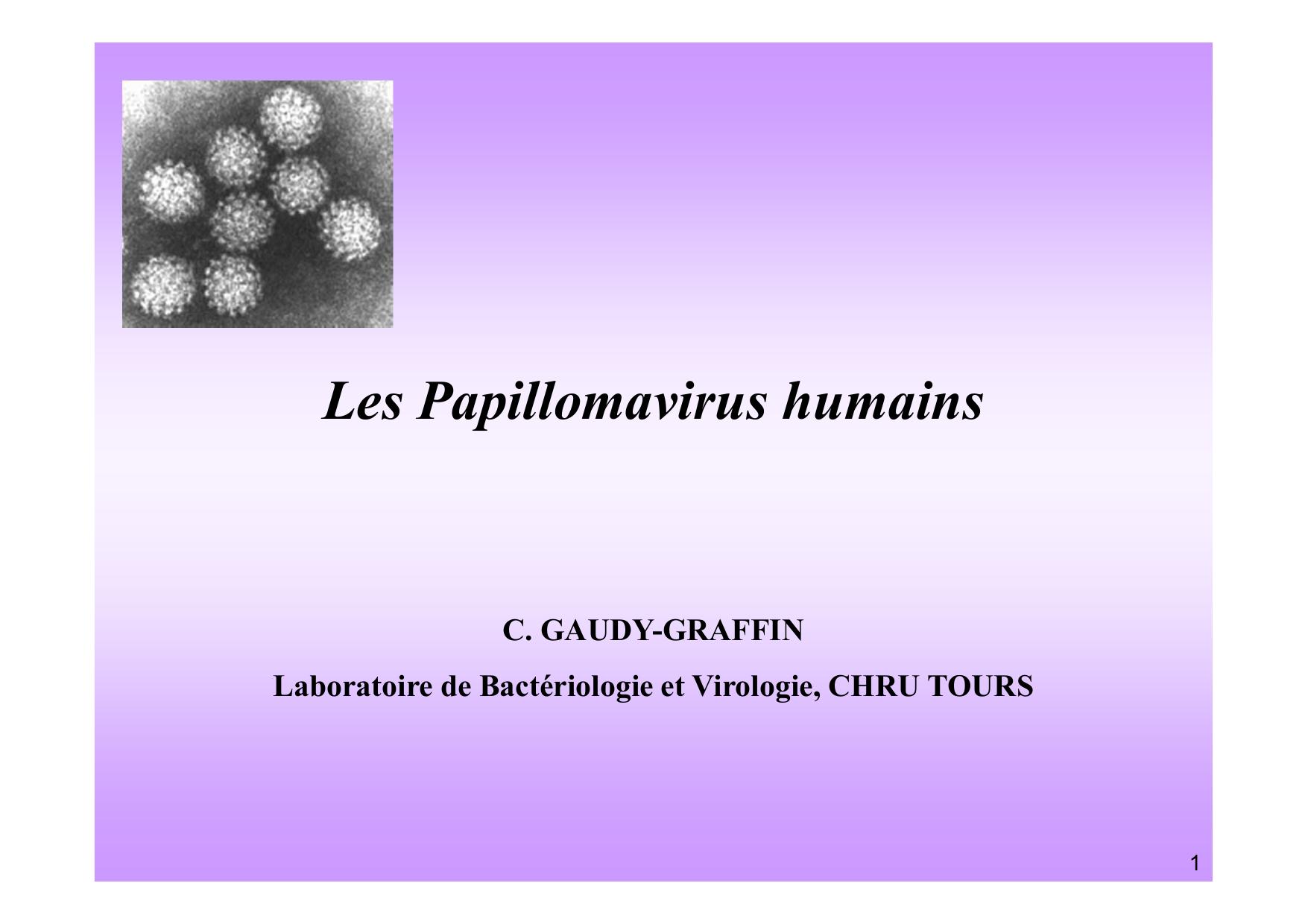 papillomavirus humain famille)