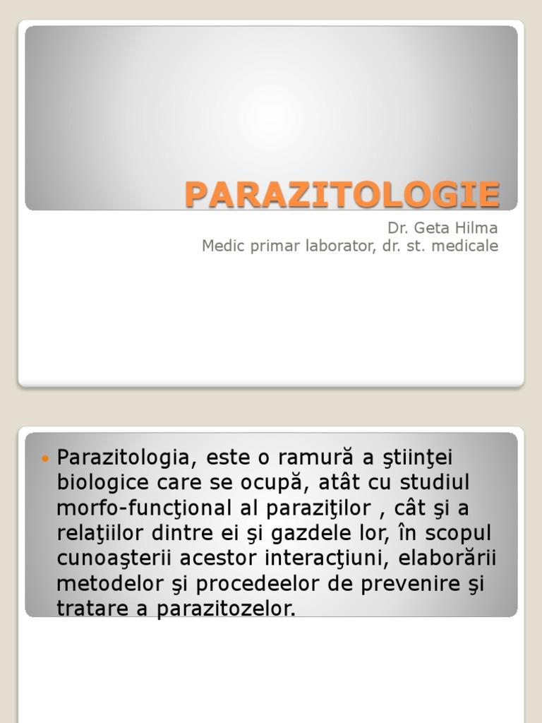 papillomavirus cure