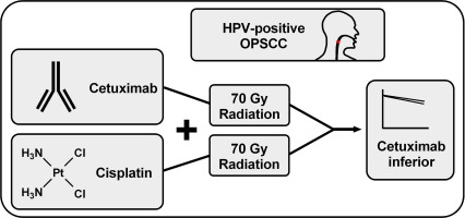 hpv positive head and neck cancer cetuximab)