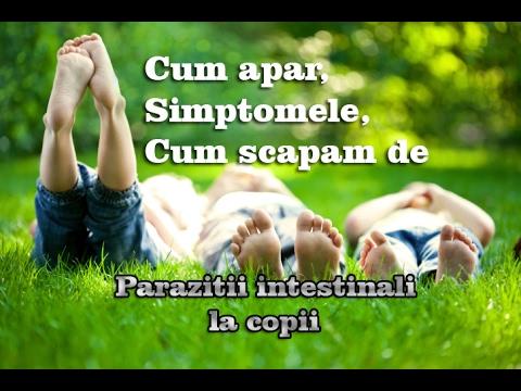 copiii viermi cum să se descurce)