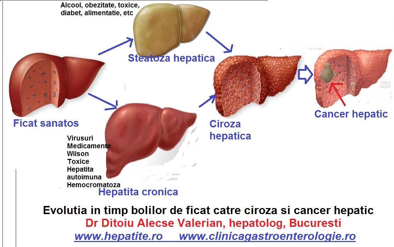 cancer hepatic regim)