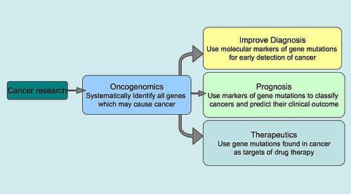 cancer genetic marker)