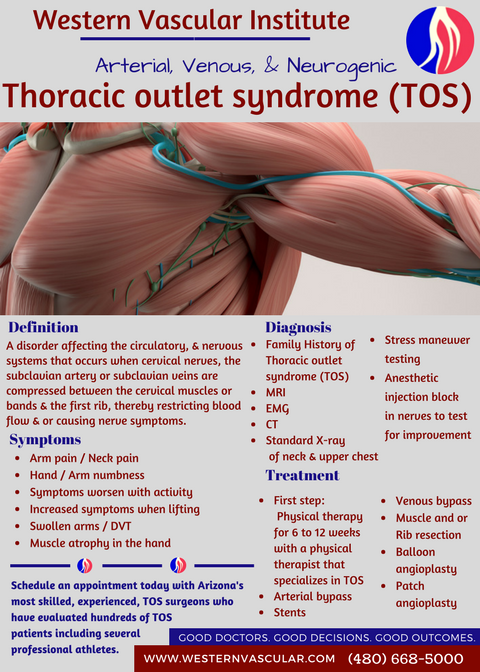 Giardia lamblia (Giardioza)- simptome și tratament – info-tecuci.ro