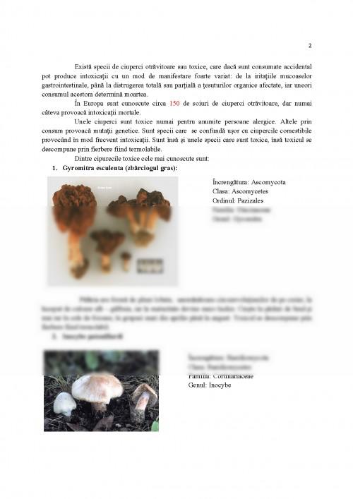ciuperci clasa 5)