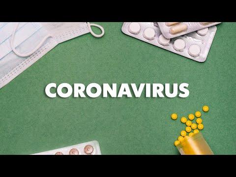 hpv virus genetic