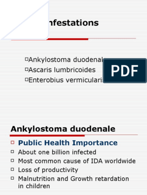Enterobius vermicularis oxyure