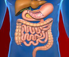 peritoneal cancer rare)