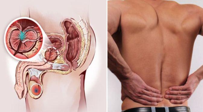 remedii pentru paraziți în stomac