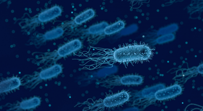 pancreatic cancer fungus curățarea paraziților de viermi