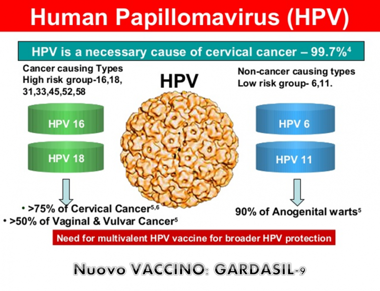 papilloma virus vaccino nome