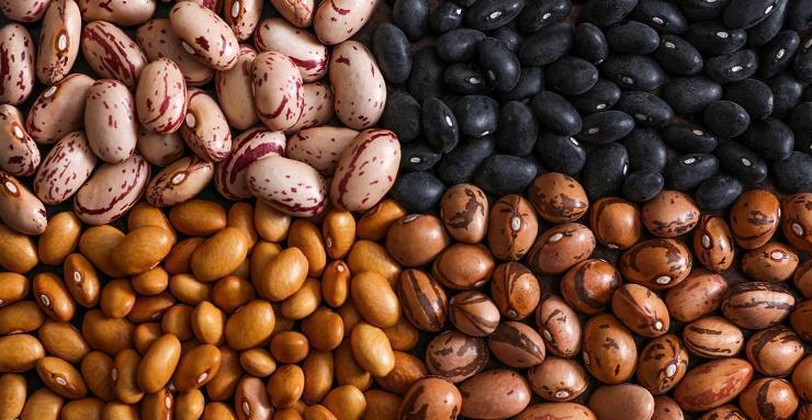 tratarea viermilor cu semințe negre de chei