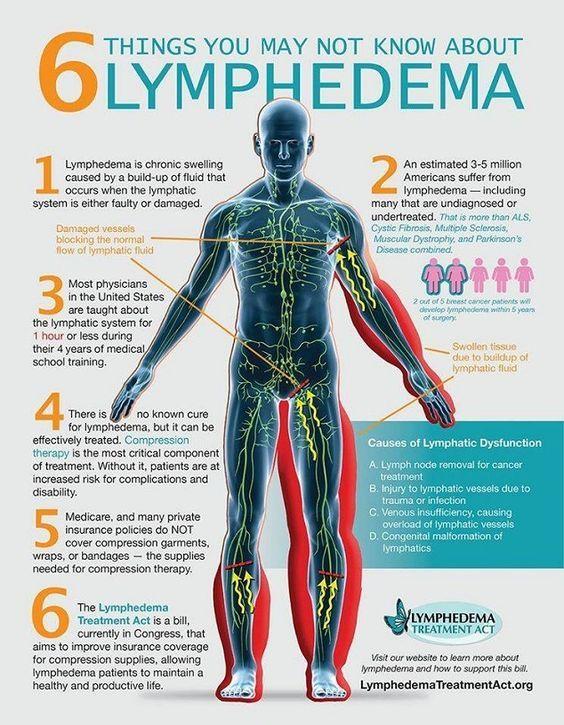 endometrial cancer lymphatic drainage