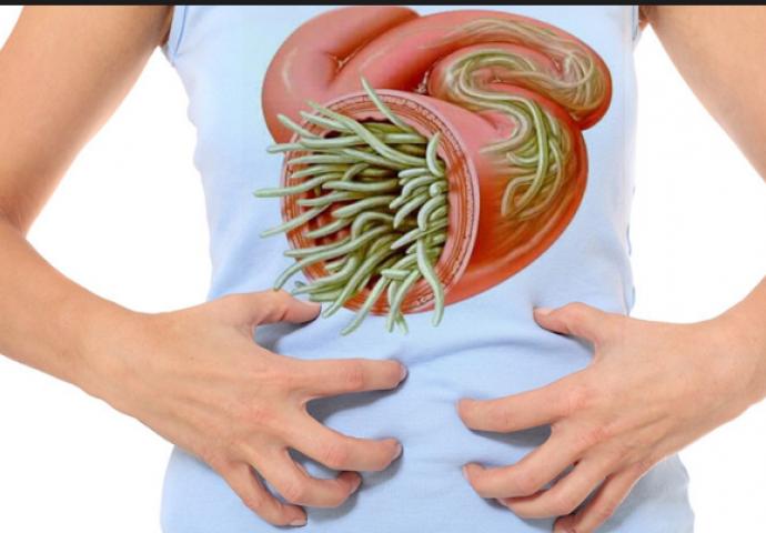 crijevni paraziti kod ljudi