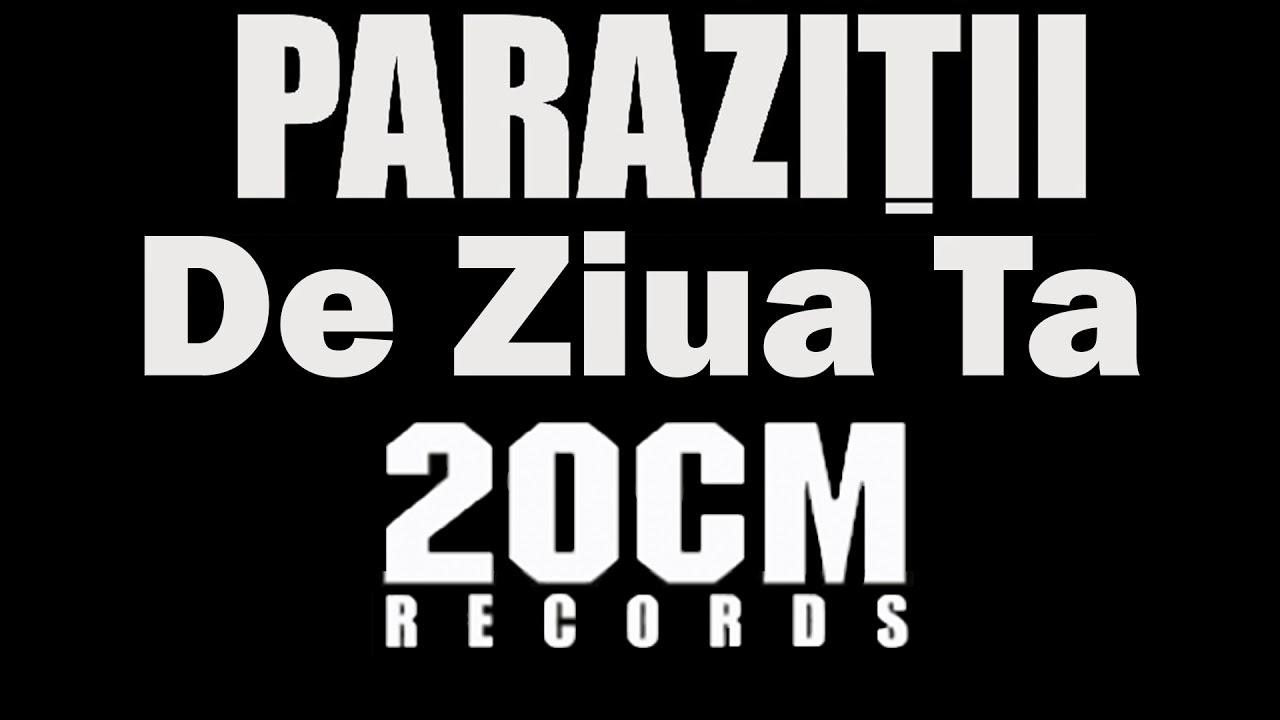 Parazitii - De Ziua Ta Lyrics