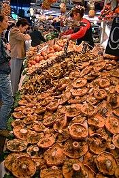 ciuperci rascovi)