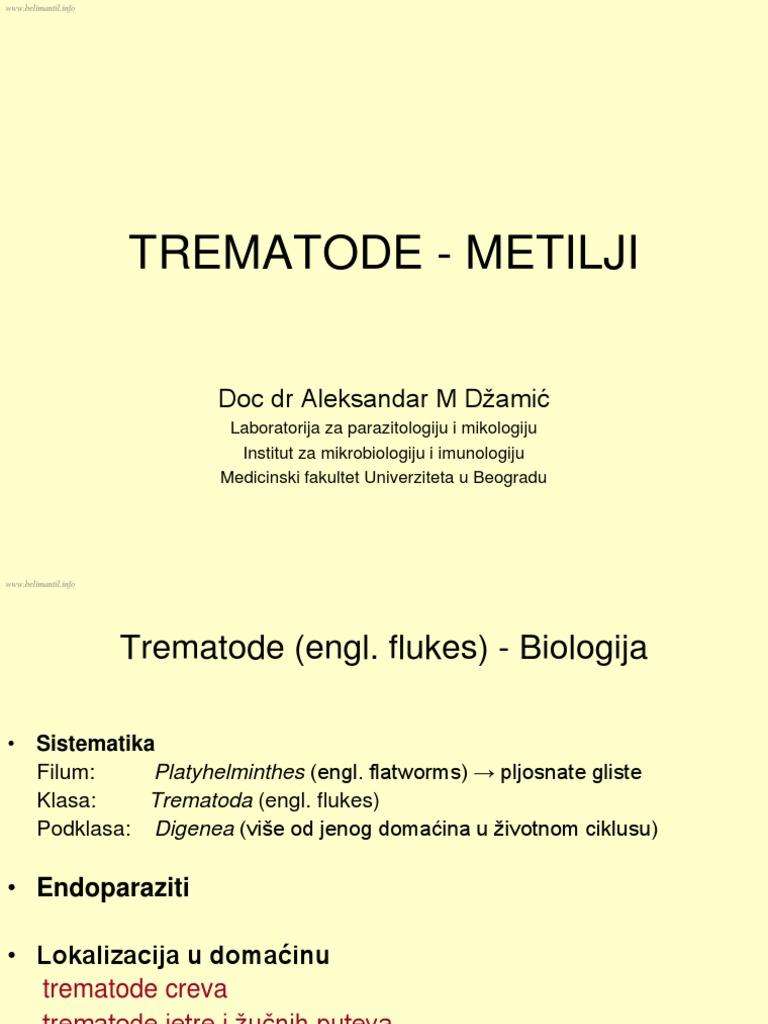 Metoda de tratament împotriva viermilor