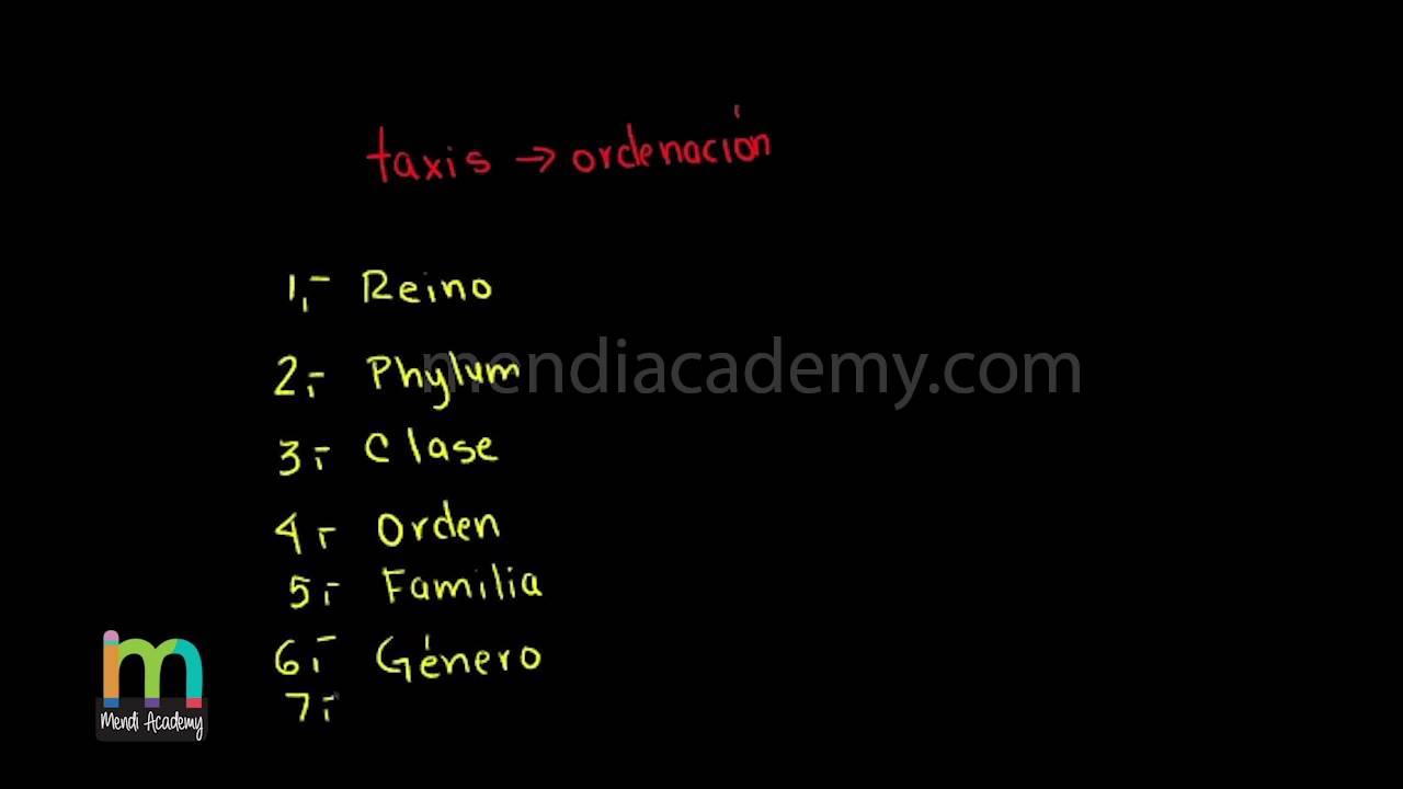 taxonomie viermi