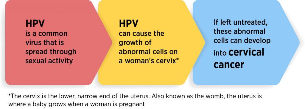 human papillomavirus hpv is also known as