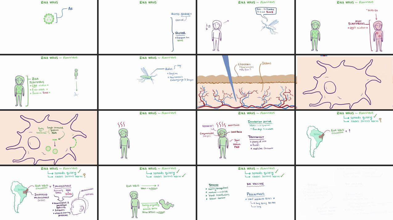 cât timp să tratezi paraziții cancer is genetic but not inherited