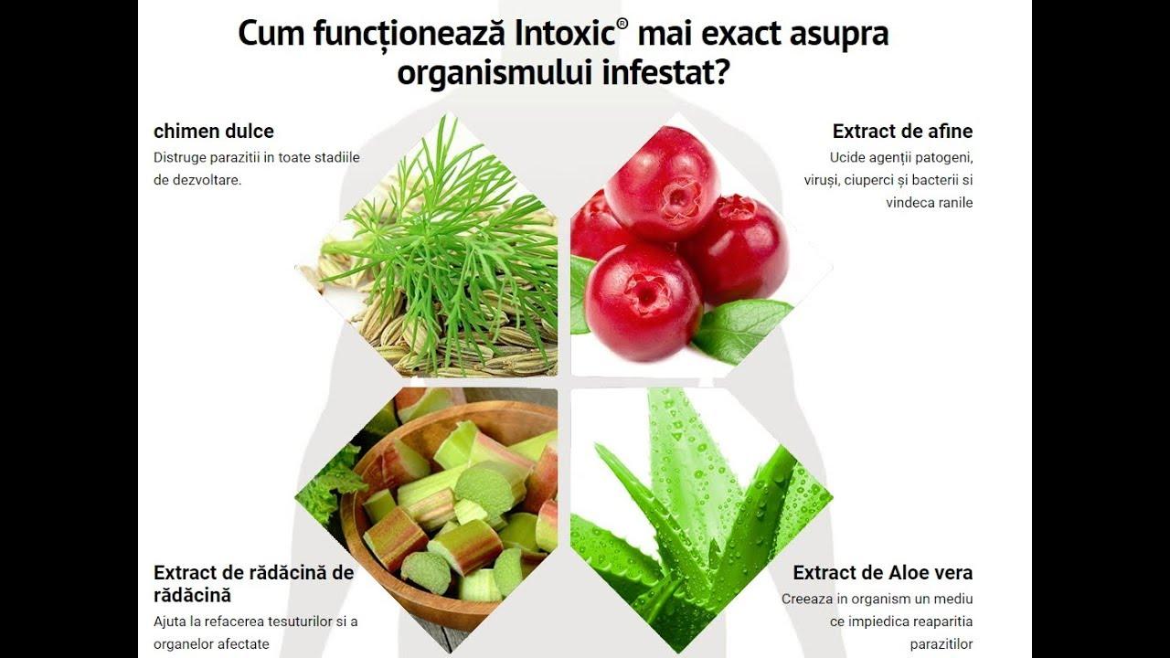 afine pentru giardiază