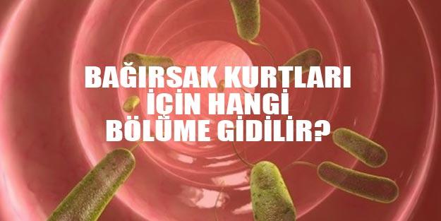 Mine G Kirikkanat-Gulun Oteki Adi - PDF Free Download