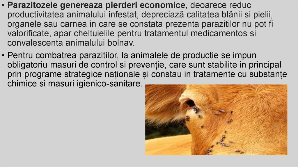 bolnavi și paraziți)