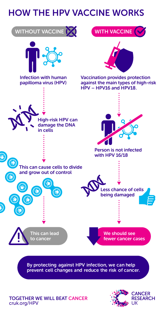 does hpv cause rectal cancer