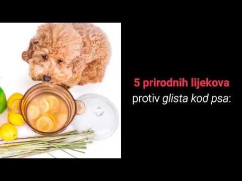 Prospect Eskazole mg x 12 compr. | Catena