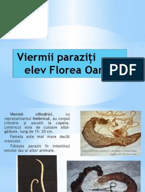 controlul parazit al corpului)